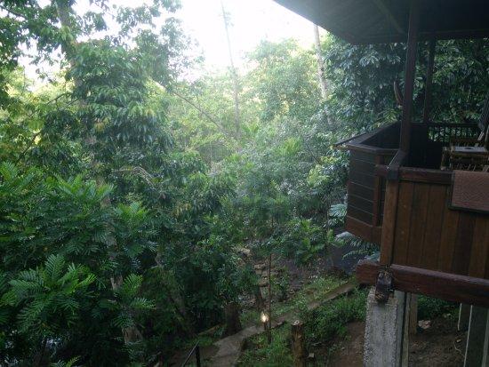Mamaling Resort Bunaken: view from the bungalow