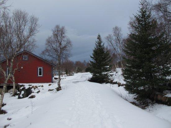 Laukvik, Noruega: En rouge un chalet pour 4 personnes
