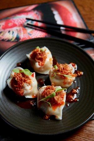 asian fusion restaurant king of snake christchurch