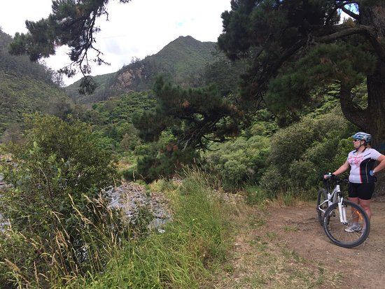 Waihi, نيوزيلندا: photo1.jpg