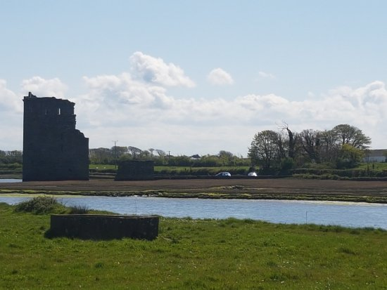 Ballylongford, Ireland: The view from the driveway
