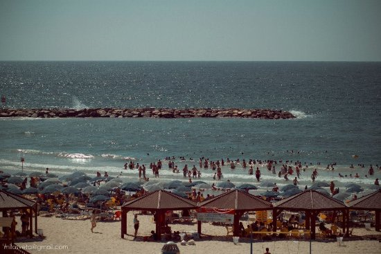 Golden Beach Hotel by Arcadia Hotels : Вид из номера, пляж