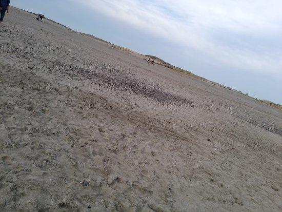 Nakatajima Beach: DSC_0475_large.jpg