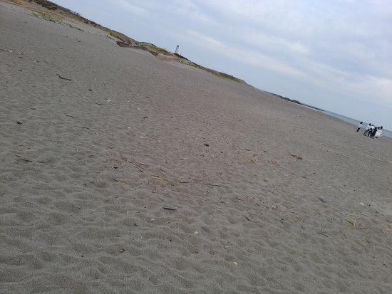 Nakatajima Beach: DSC_0477_large.jpg