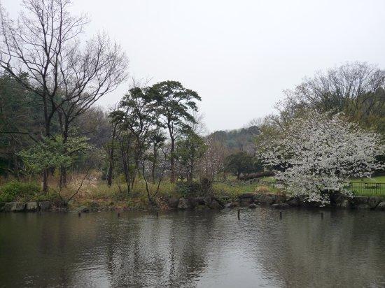 Taman Shizen Kodomo