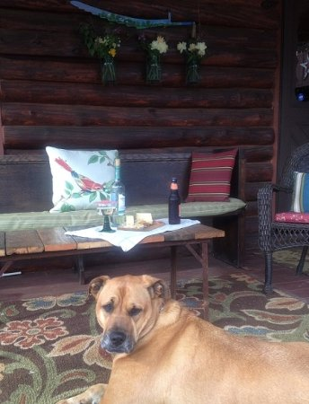 Franklin, WV: Sitting area on the back porch - enjoy an appetizer