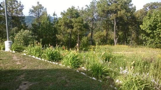 vast expanse of the lawns - PWD Rest House Chindi
