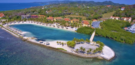 Roatan's Snorkel and Reef Tours