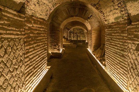 Down the rabbit hole photo de underground naples naples - Hole d entree ...