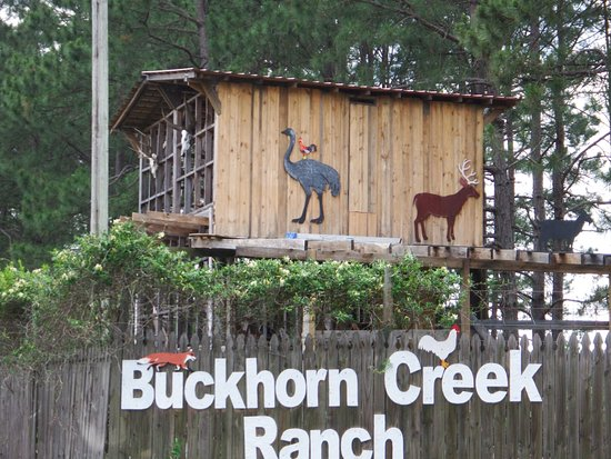 Buckhorn Creek Ranch