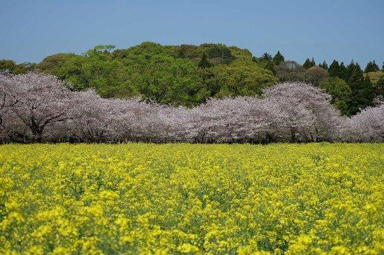 Saitobaru Park