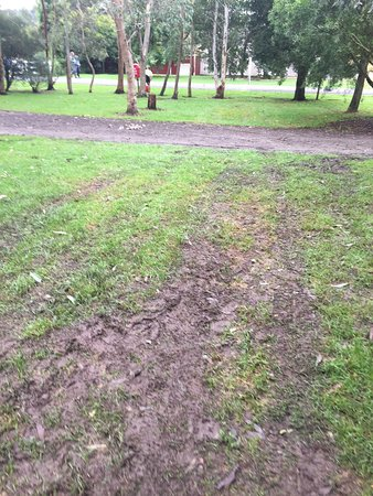 Gellibrand, Australia: Photos clearly show tracks of ONE car that drove on grass twice (across & then back) not several