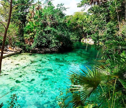 Cenote Yax Kin Camping