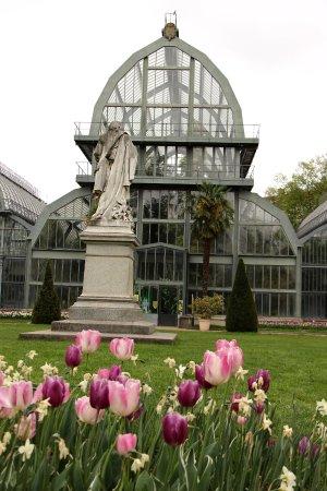 serre du jardin botanique picture of parc de la tete d