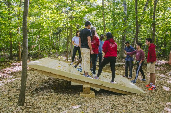 Lanesboro, MA: Advanced Team Building Initiatives - Low Ropes Course