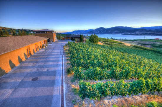Naramata, Canadá: Therapy Vineyards
