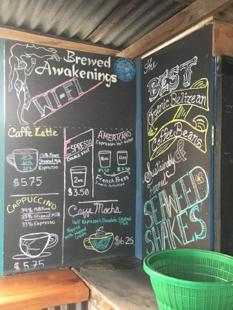 Brewed Awakenings: photo5.jpg