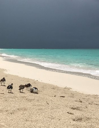 The Regent Grand: Even a passing rain shower is picturesque in Turks!