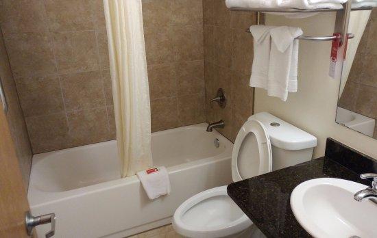Econo Lodge: Nice clean bathroom - dual flush toilet