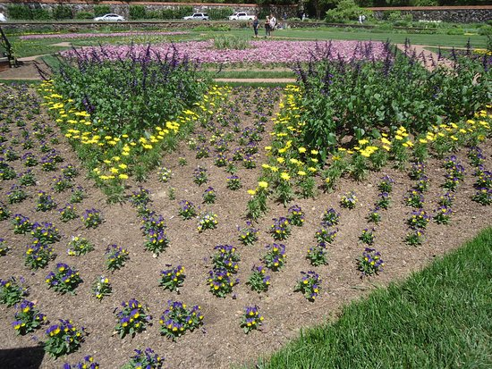 Summer gardens at Biltmore - Picture of Biltmore Gardens, Asheville ...