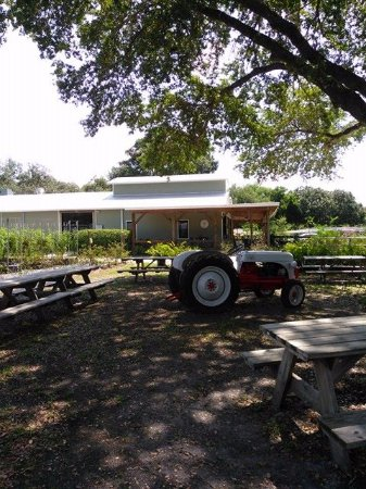 Buckingham Farms: Picnic Tables