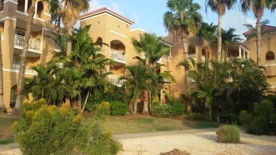 20170421 190337 picture of divi village golf - Divi golf and beach resort ...