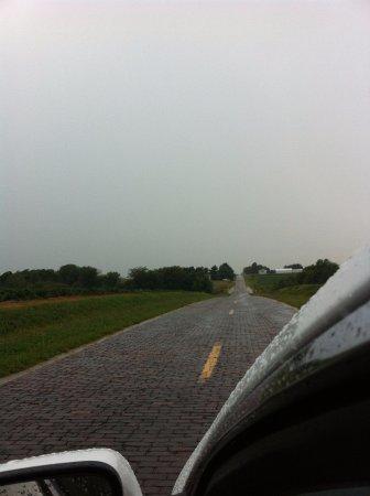 Old brick road (Snell Rd), Auburn, IL