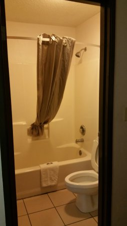 Lansing, IL: Room 207 Bathroom