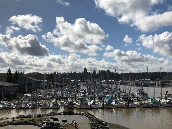 South Sound Adventures: A view from a top the tower at Port Plaza Park