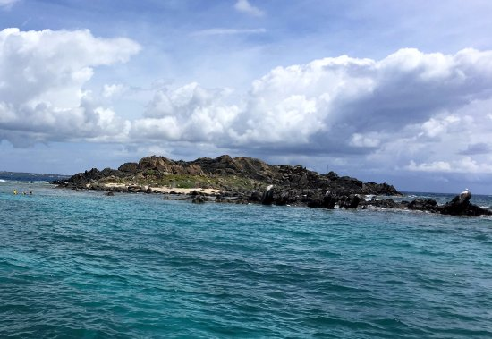 Robinson Speed Boat Tours: One of the snorkel stops