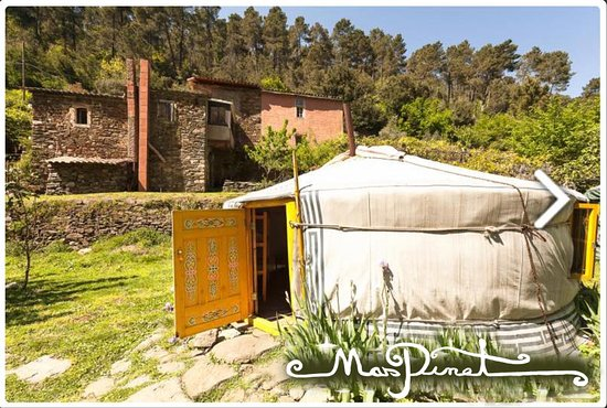 Mas Pinet : la yourte jaune / the yellow yurt