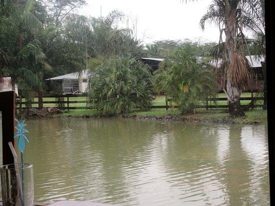 Matoury, French Guiana: point d'eau jouxtant la terrasse couverte