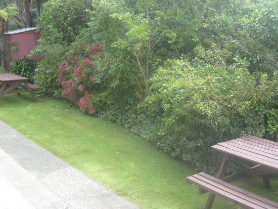 Buller Court on Palmerston: Studio garden
