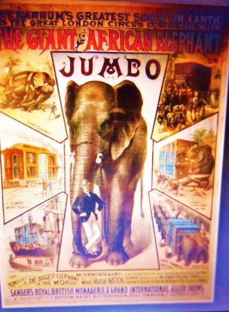 Saint Thomas, Canadá: Jumbo the star of the Barnum and Bailey Circus