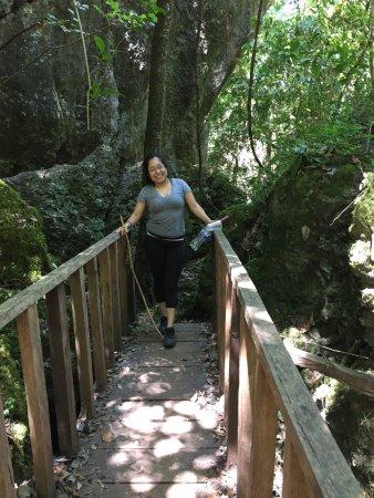 Northern Mexico, Μεξικό: Reserva de la Biósfera El Cielo