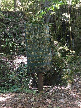 Northern Mexico, Mexico: Reserva de la Biósfera El Cielo