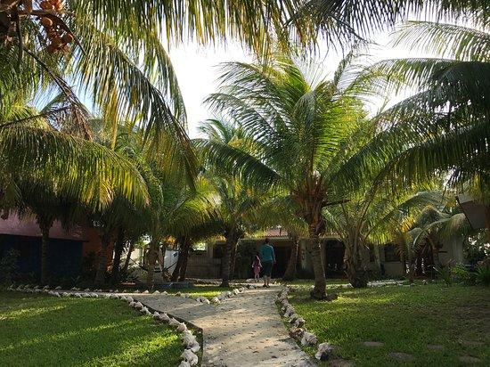 El Milagro Beach Hotel and Marina Bild