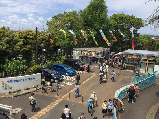 Nogeyama Zoo: photo0.jpg
