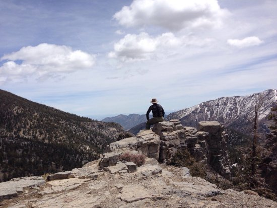 Mount Charleston : Cool up here