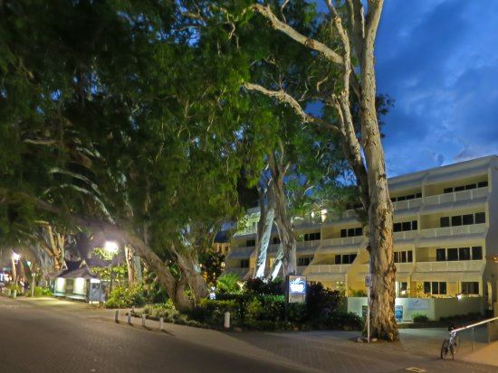 Photo of Marlin Waters Beachfront Apartments Palm Cove