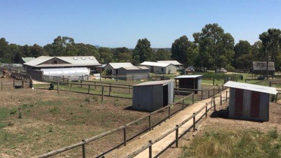 Cooper's Settlement