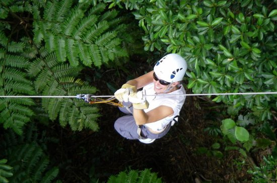 Half Day Fiji Zip Line Tour From C Coast Hotels