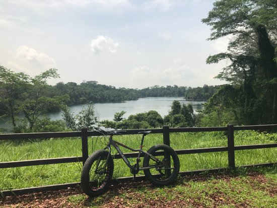Pulau Ubin, Singapore: One of the views in the mountain bike park