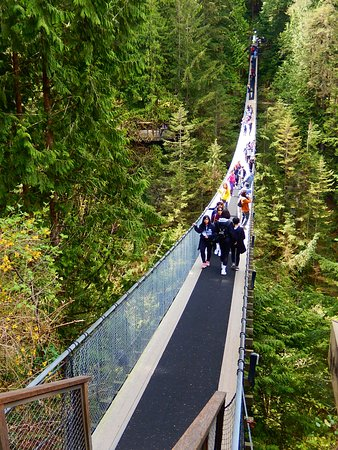 North Vancouver, Canada: the suspension bridge