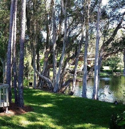 3 Wellnesshotels auf Ischia - Wellness-Regionennet