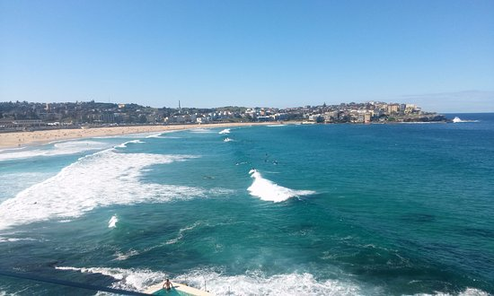 great day - as good as it gets for a view of bondi beach from