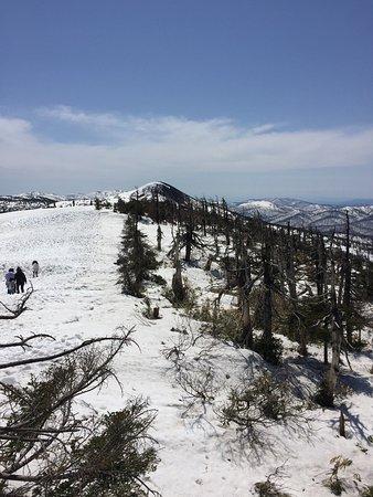 Hachimandaira Promenade Peak: photo0.jpg