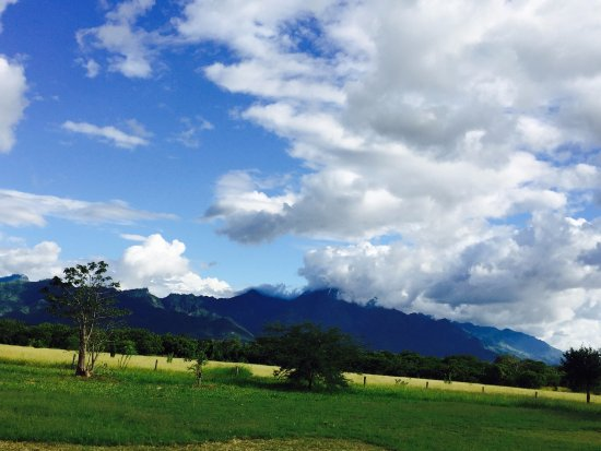 Mbuyuni Farm Retreat Image