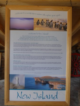 Западный Фолкленд, Фолклендские острова: am kleinen Museum