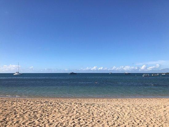 Sailaway Reef and Island Tours: photo0.jpg
